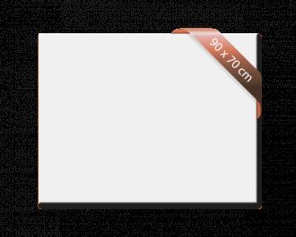 Infrarood verwarming: Heat4All ICONIC Classic 750. Wit infraroodpaneel. 90 x 70cm. 600 Watt